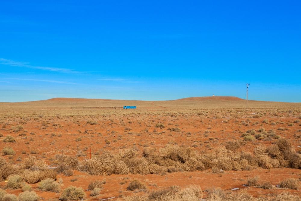 Desert Living