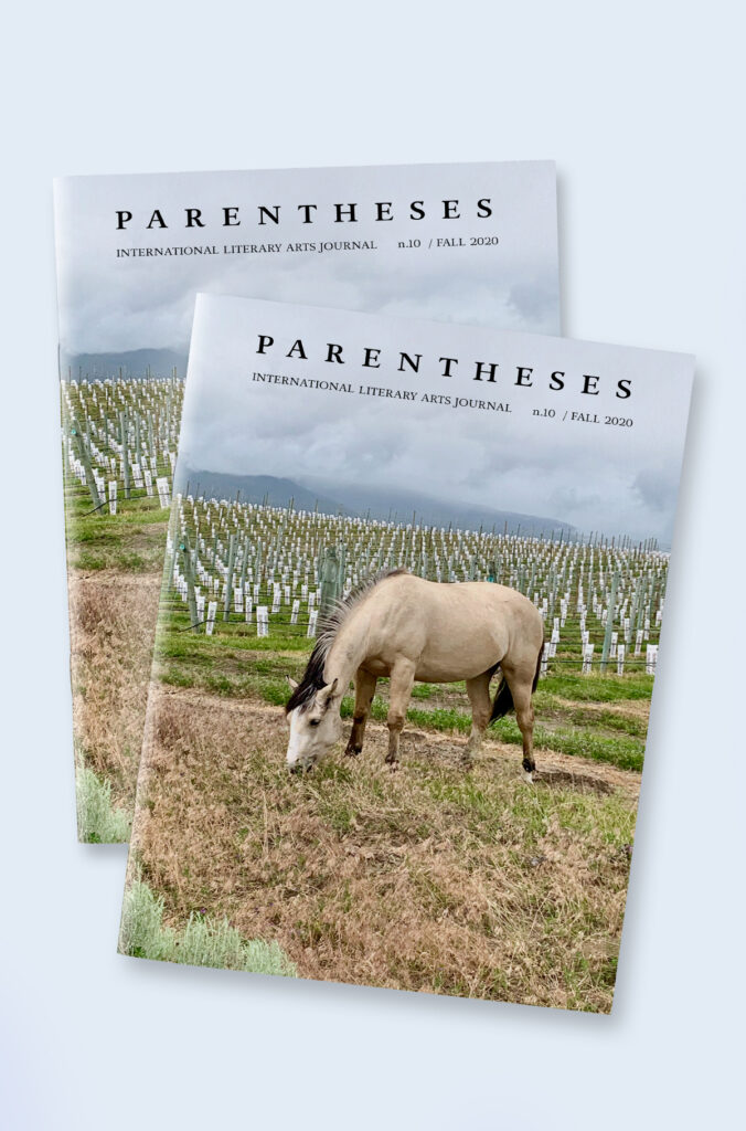 Parentheses Journal - Issue 10